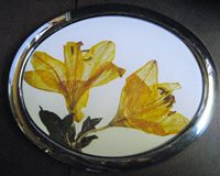 AA&V yellow flower
