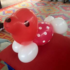 balloon seal