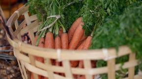 Burrabee carrots