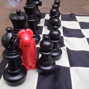 chess penguin 1