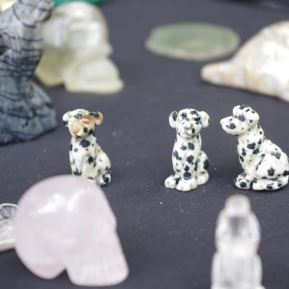 gemstone dalmations