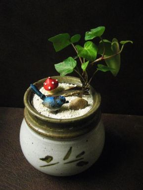 plants bird and mushroom